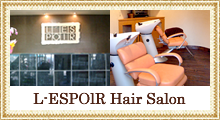 L-ESPOlR Hair Salon